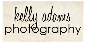 Brisbane Wedding Photographer logo